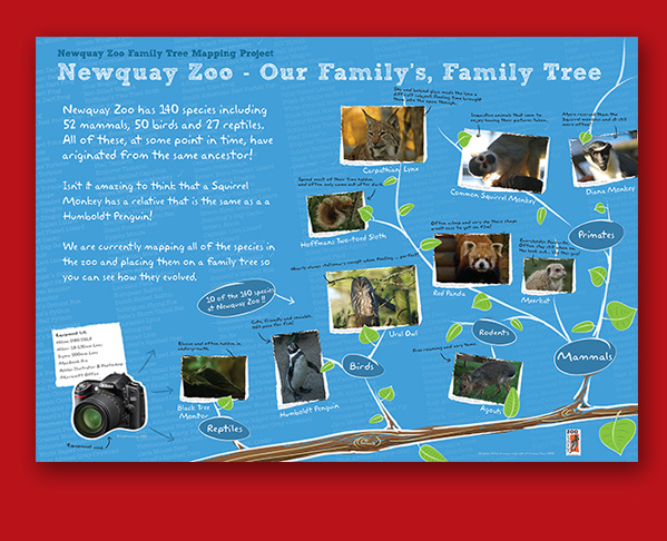 Newquay Zoo Family Tree Poster